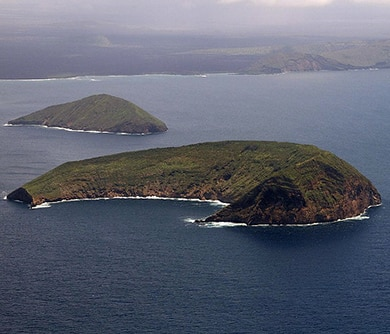 Isla Tortuga   Galàpagos